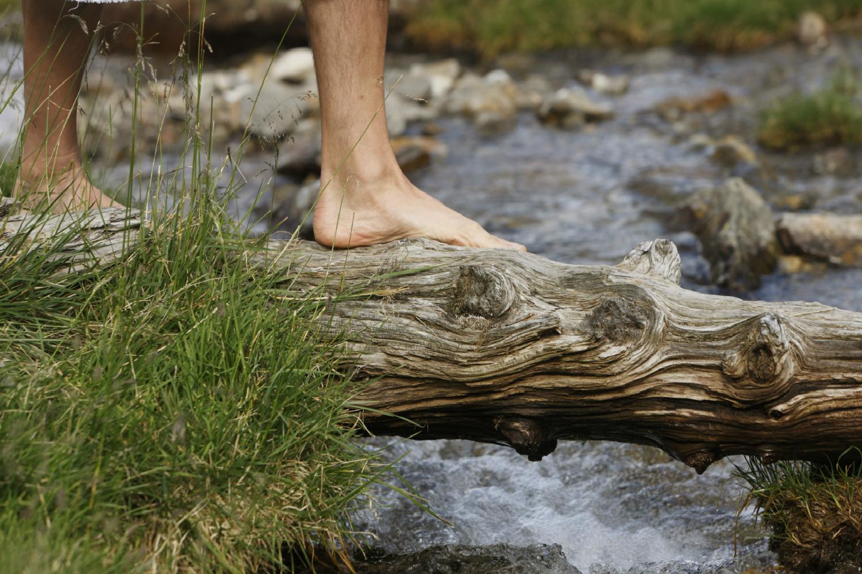 L'importanza della coesione nel movimento bioregionale ed eco-spiritualista-pacifista...